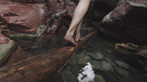 Handheld shot of a woman's legs crossing water on a horizontal tree trunk Royalty-free stock video