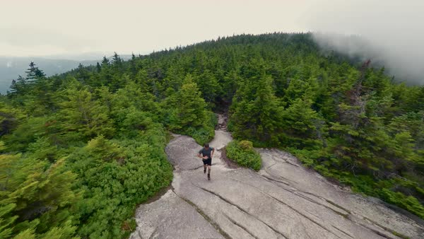 Drone shot of a man hiking in a forest Royalty-free stock video