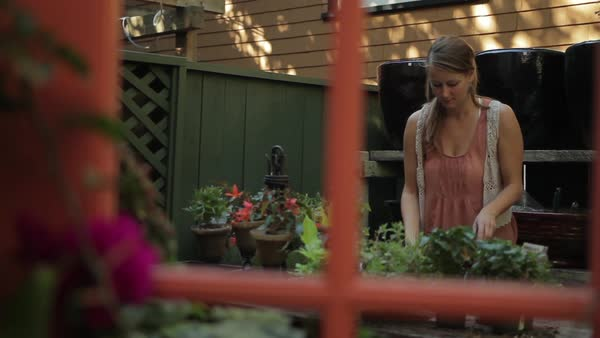 Medium shot of a woman gardening outdoors Royalty-free stock video