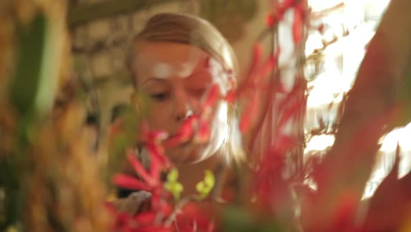 Medium close up shot of a woman arranging a flower bouquet Royalty-free stock video