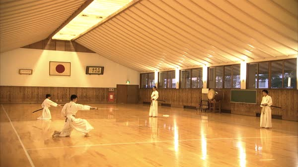 Hand-held shot of martial class students Rights-managed stock video
