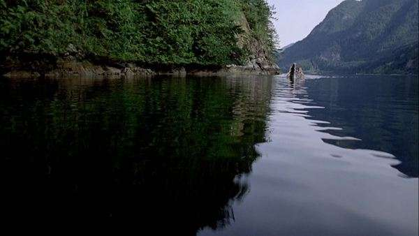 Montage of people paddling a canoe in Alaska Rights-managed stock video