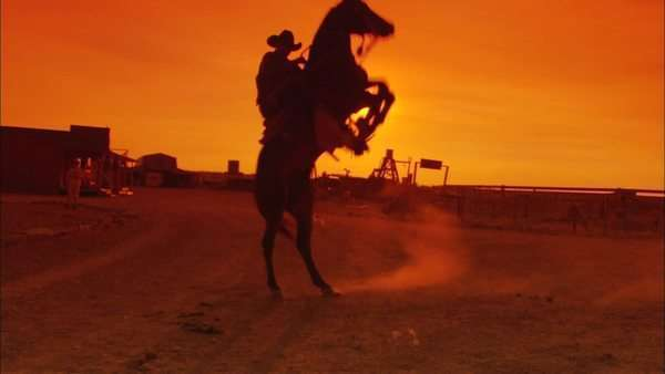 Full shot of cowboy on bucking horse at sunset Rights-managed stock video