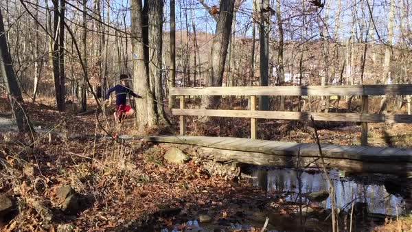Hand-held shot of a teenage boy running over a bridge in a forest Royalty-free stock video