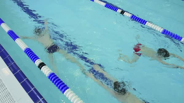 Young boys swimming during school sport training at indoor pool Royalty-free stock video
