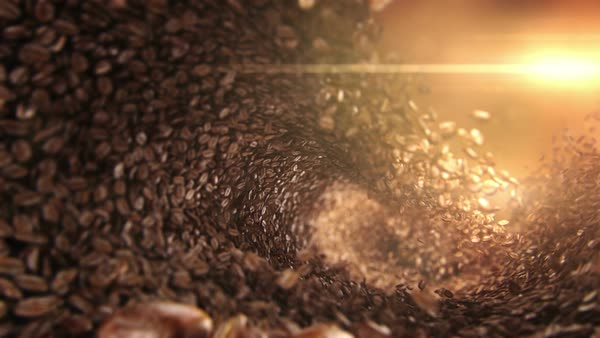 Coffee Beans Falling Wave D1882 3 004