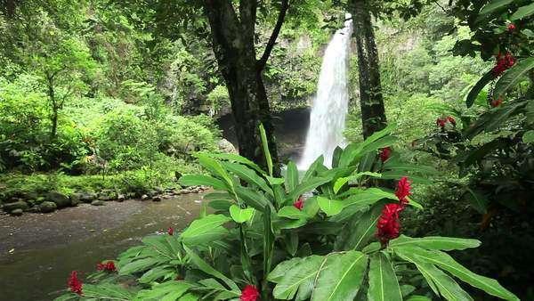 Beautiful Bouma Falls On Taveuni Island In Fiji Surrounded With D256 4 099