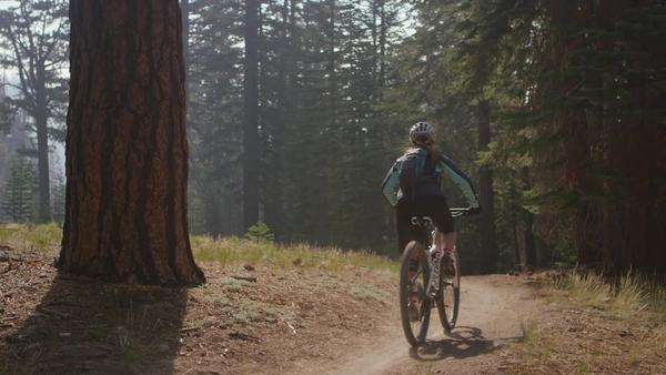 A mountain biker rides in a forest Royalty-free stock video