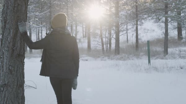 Push-in shot of a woman standing in a winter forest Royalty-free stock video