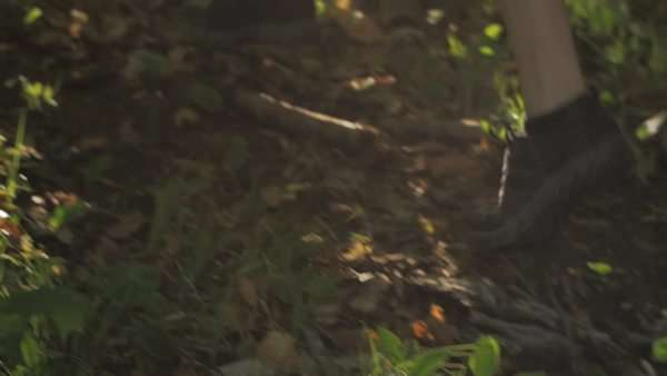 Handheld shot of a woman jogging in a forest Royalty-free stock video