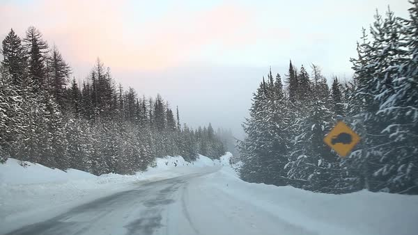 Point of view of a snow covered road Royalty-free stock video