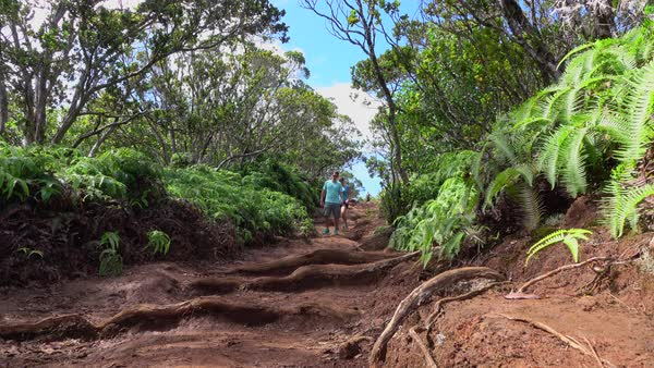 LOW ANGLE VIEW: Cheerful young man and woman walking along dirt path  leading through lush jungle volcanic Hawaii  Sports couple on summer  vacation