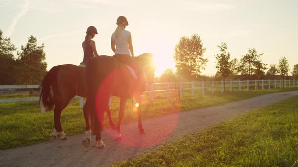 SLOW MOTION, CLOSE UP: Rear view of two young girls horseback riding  beautiful mare and gelding along the sandy footpath on horse ranch at  golden
