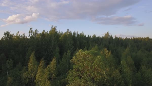 Flying over the woods, village and railway running through it. Scene at sunset, Russia Royalty-free stock video