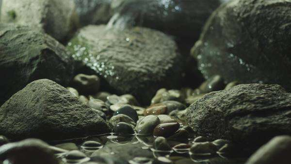 Close-up shot of stone Zen garden Royalty-free stock video