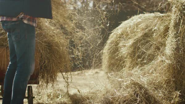 Man is cleaning a farm yard from hay with a pitchfork on a sunny day. Royalty-free stock video