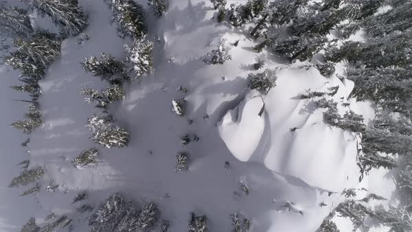 Overhead Aerial on Summit of Forest Mountain Ridge with Fresh Powder Snow on Sunny Day Royalty-free stock video