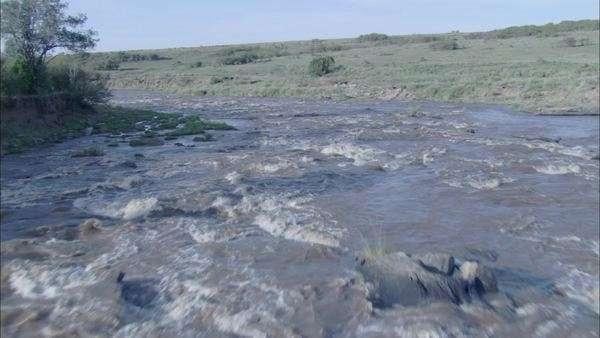 Grassland Community Stream. Pan Over Grasslands Community By ...