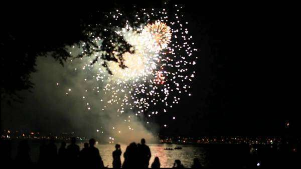 Handheld shot of fireworks in night sky above water with people and trees in silhouette in foregroud Royalty-free stock video