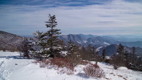 Blue Ridge Mountains Covered In Snow Of North Carolina D982 60 039