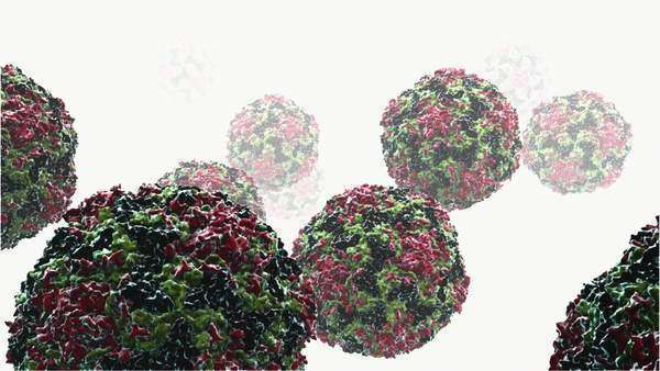 Human rhinovirus particles. Royalty-free stock video