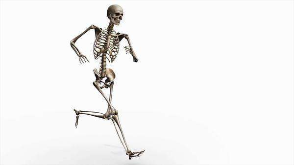 Computer animation of the male skeletal system running on a transparent background. Royalty-free stock video