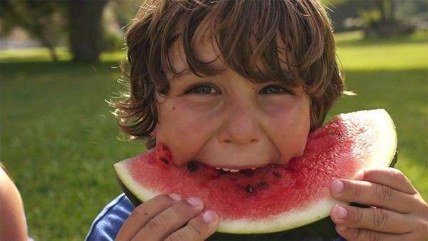 Boy eating watermelon in park. Royalty-free stock video