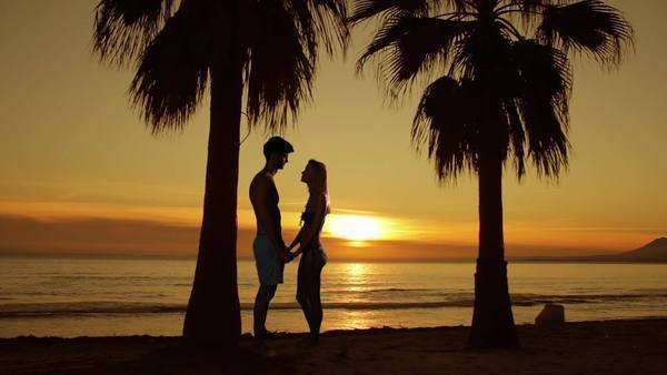 Couple embracing on the beach at sunset with palm trees. Royalty-free stock video