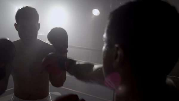 Boxer punching in boxing ring, POV Royalty-free stock video