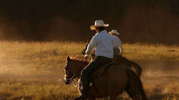 Cowboy on horses at sunset, slow motion Royalty-free stock video