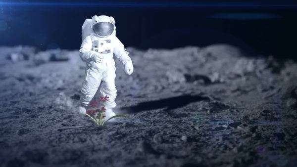 Astronaut finds life on a  remote planet Royalty-free stock video