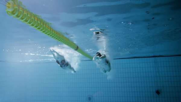 Underwater view of 2 professional female swimmers racing. Royalty-free stock video