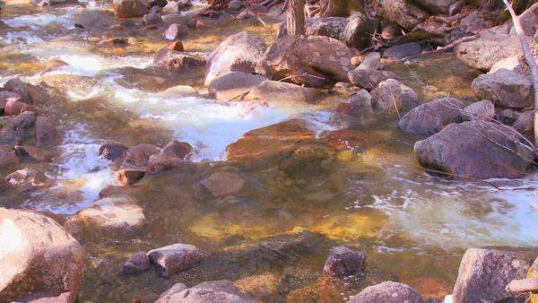 The mountain stream  flows through Yosemite National Park. Royalty-free stock video