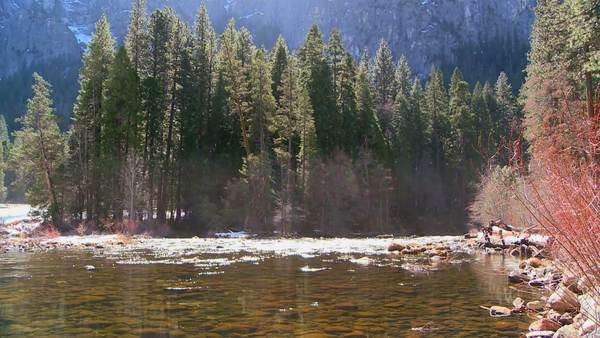 The Merced River flows through Yosemite National Park. Royalty-free stock video