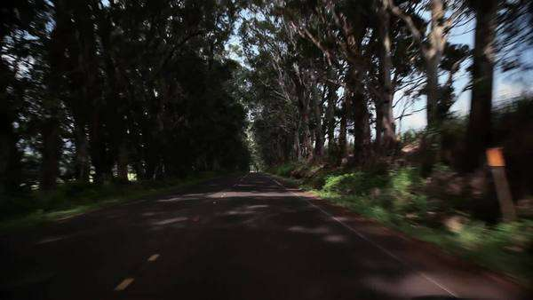 View from moving car on road, Kauai, Hawaii Royalty-free stock video