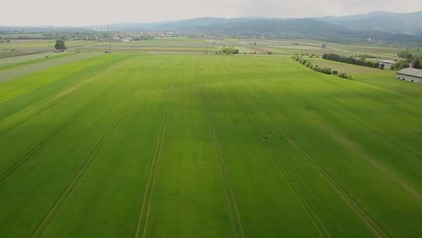 Aerial shoot over the green fields, with city in the back Royalty-free stock video