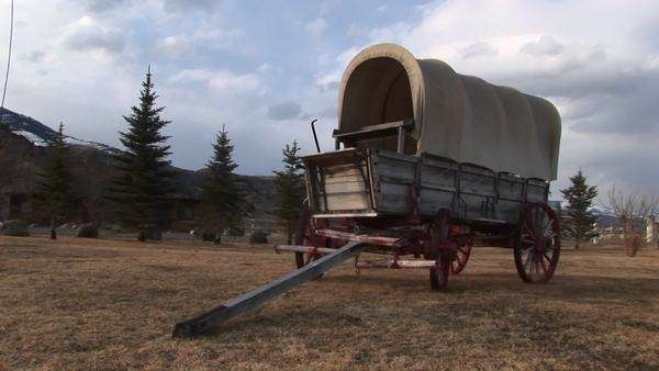 A covered wagon looks right at home against the backdrop of evergreens and prairie. Royalty-free stock video