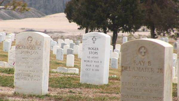 Headstones stand at Arlington National Cemetery. Royalty-free stock video