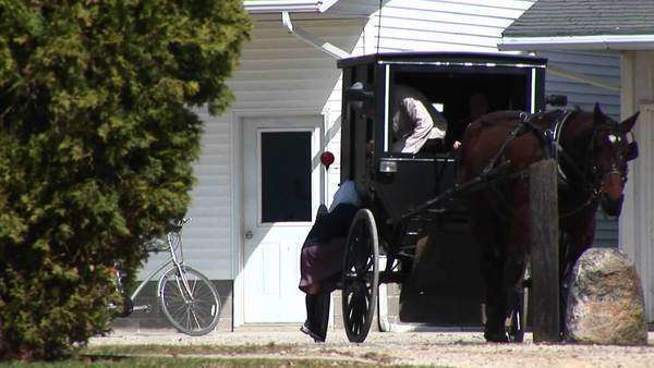 An Amish boy and girl prepare to travel via their horse and buggy. Royalty-free stock video