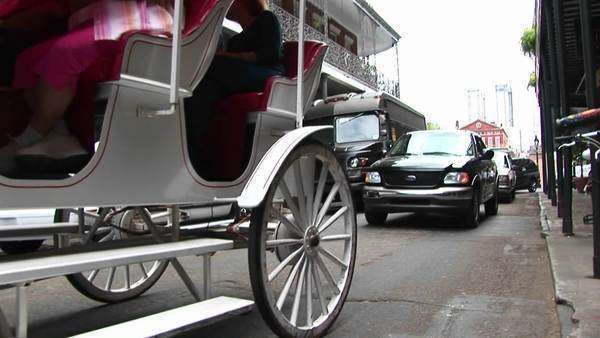 A horse-drawn tourist carriage makes its way down a crowded street in New Orleans. Royalty-free stock video