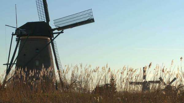 Windmills rise out of the grass in Holland. Royalty-free stock video