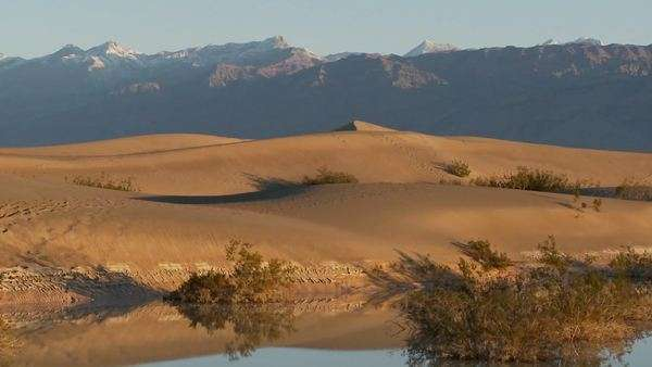 A pan across desert dunes at an oasis. Royalty-free stock video