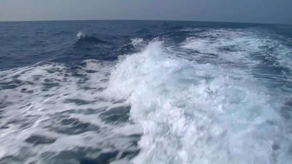 The wake of a boat as seen from the stern of a ship. Royalty-free stock video