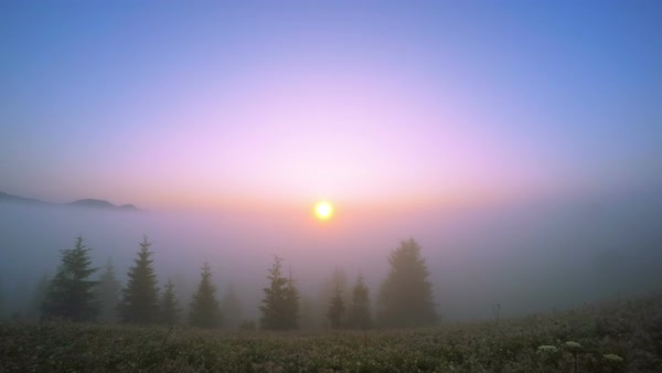 Sunrise in the Summer Mountains with Morning Mist. Royalty-free stock video