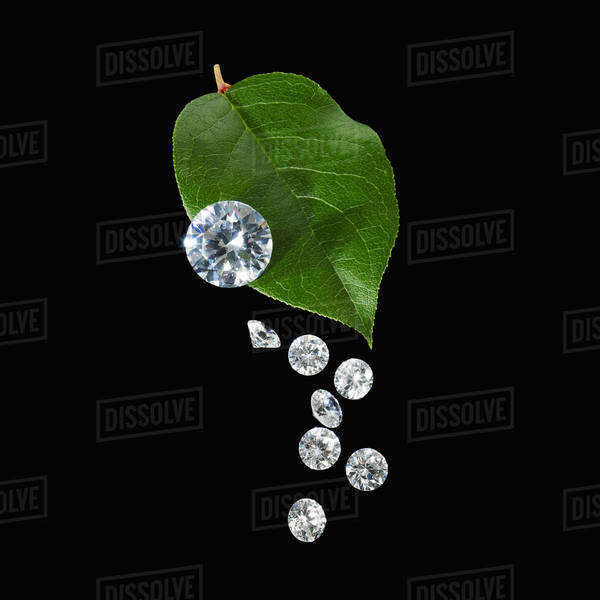 Still life. Green leaf foliage and decorations. A green leaf with vein markings. A group of small clear glass beads, gem cut with reflective surfaces. Royalty-free stock photo