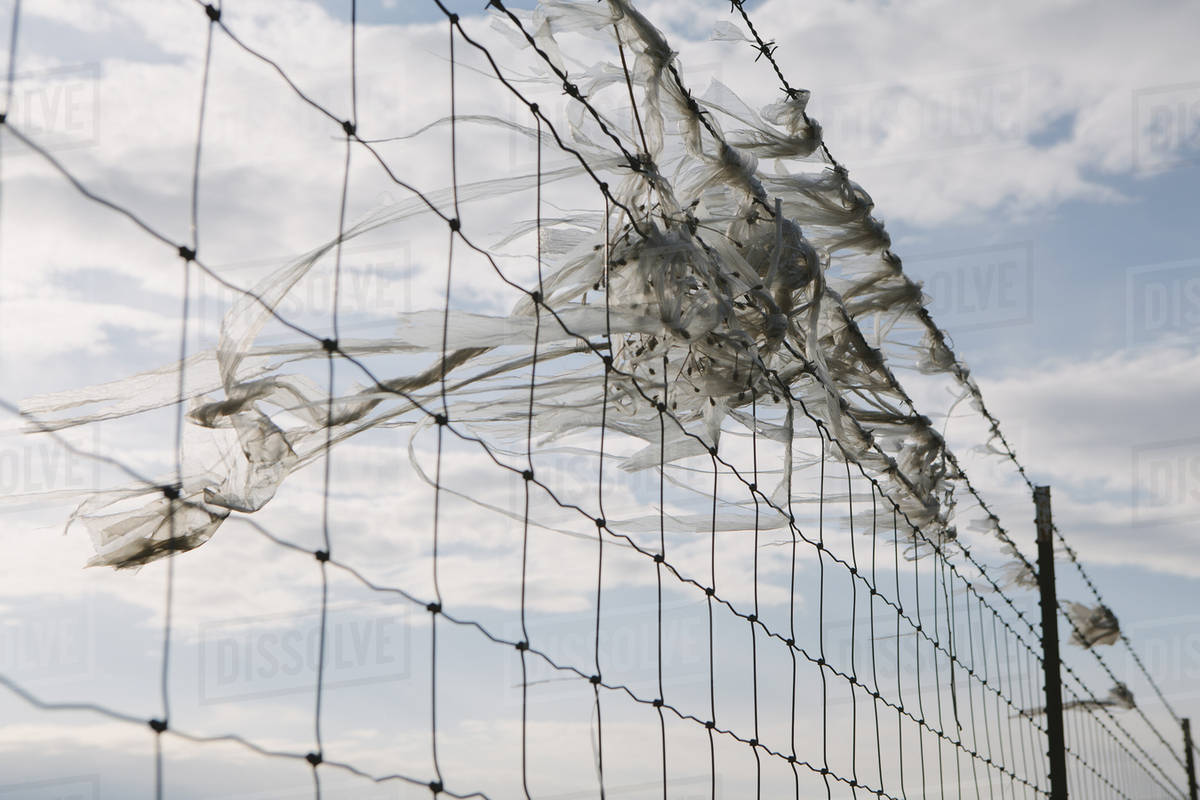 A shredded plastic bag caught on barbed wire fence - Stock Photo ...