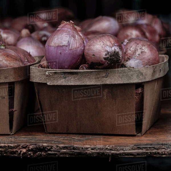 Red onions in containers Royalty-free stock photo