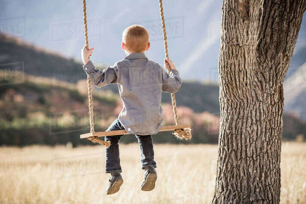 Boy (4-5) sitting on swing Royalty-free stock photo