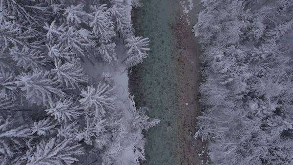 Aerial, vertical - River through the winter forest at a light snowing. Royalty-free stock video