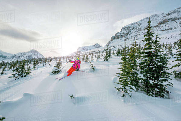 Female ski adventurer makes a turn on a powder ski slope. Royalty-free stock photo